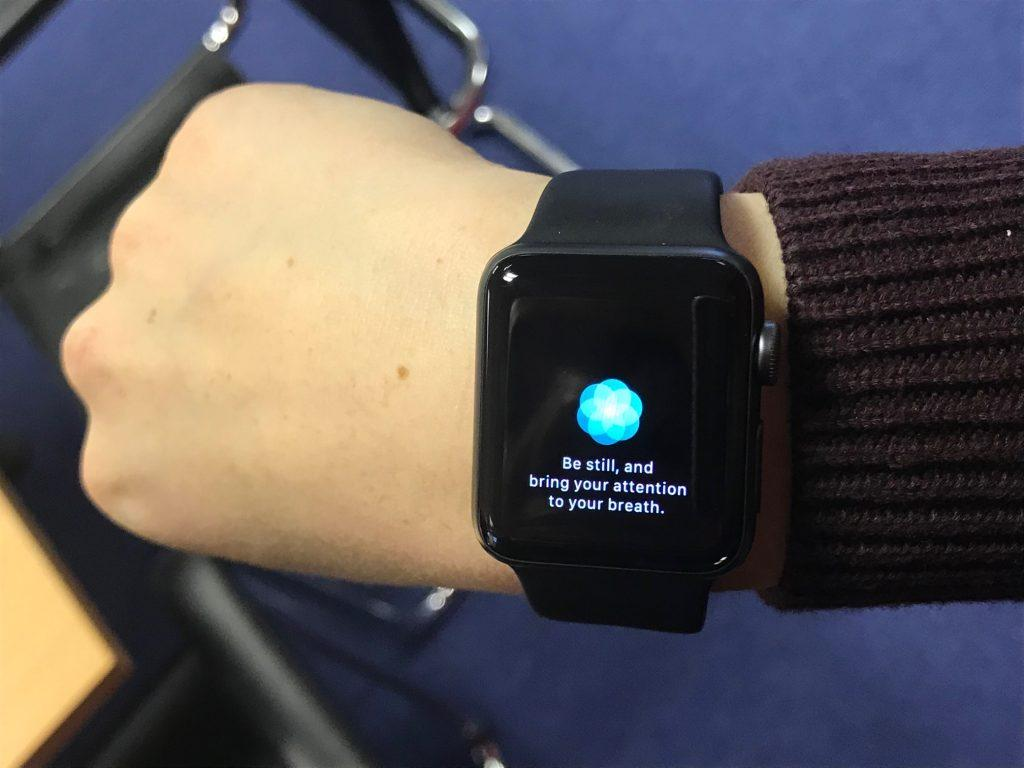 Heart rate app from Apple iWatch